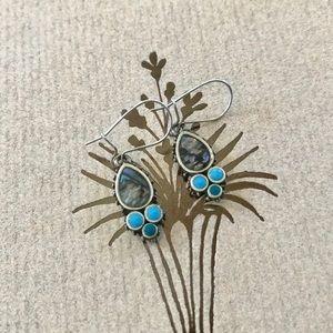 Unique Abalone Earrings